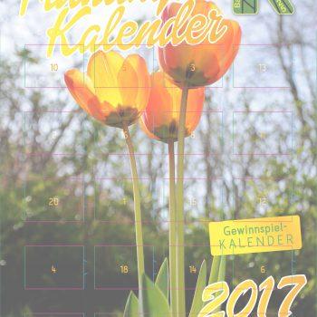 background_kalender